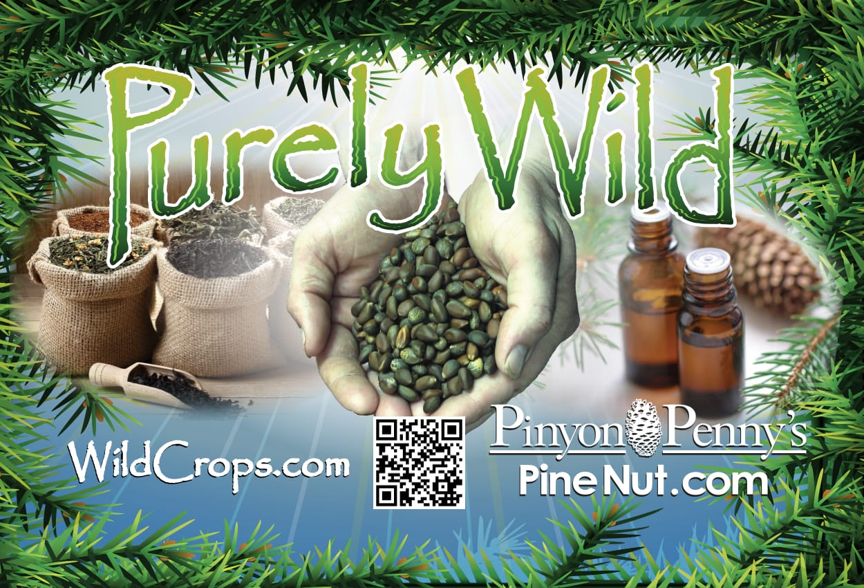 American Pine Nuts - shell free pine nut kernels from Nevada 100% product of USA